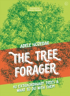 The Tree Forager - 40 Extraordinary Trees & What to Do With Them