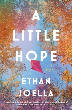 A little hope - a novel
