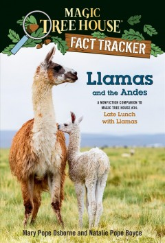 Llamas and the Andes - late lunch with llamas
