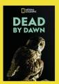 Dead by dawn.