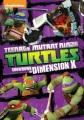 Teenage Mutant Ninja Turtles. Showdown in dimension X