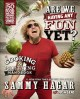 Are we having any fun yet? : the cooking & partying handbook