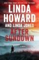 After sundown a novel