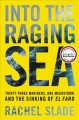Into the raging sea : thirty-three mariners, one megastorm, and the sinking of El Faro
