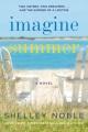 Imagine summer : a novel