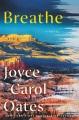 Breathe : a novel