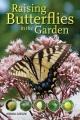Raising butterflies in the garden