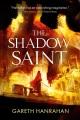 The shadow saint