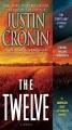 The twelve : a novel