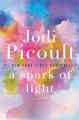 A spark of light : a novel