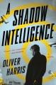 A shadow intelligence