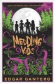 Meddling kids : a novel