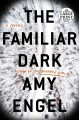 The familiar dark : a novel