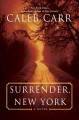 Surrender, New York : a novel
