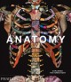 Anatomy : exploring the human body.