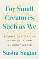For Small Creatures Such as We: Rituals for Finding Meaning in Our Unlikely World