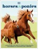 Horses & ponies : everything you need to know, from bridles and breeds to jodhpurs and jumping!