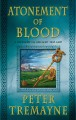 Atonement of blood : a mystery of ancient Ireland