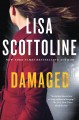 Damaged : a Rosato & DiNunzio novel