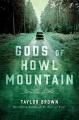 Gods of Howl Mountain : a novel
