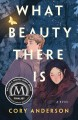What beauty there is : a novel