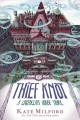 The thief knot : a Greenglass House story