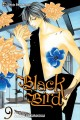 Black bird V.9