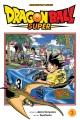 Dragon Ball super. 3, Zero mortal project