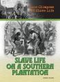 Slave life on a southern plantation