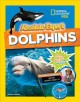 Absolute expert : dolphins