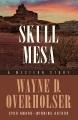 Skull mesa : a western story