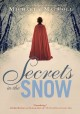 Secrets in the snow : a novel of intrigue and romance