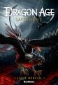 Dragon Age--Last Flight