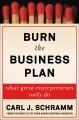 Burn the business plan : what great entrepreneurs really do