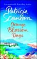 Orange blossom days : a novel