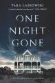 One night gone : a novel