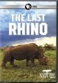 The last rhino