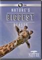 Nature's biggest beasts