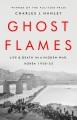 Ghost flames : life and death in a hidden war, Korea 1950-1953