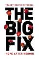 The big fix : hope after heroin