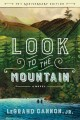 Look to the mountain : a novel