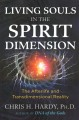Living souls in the spirit dimension : the afterlife and transdimensional reality