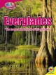 The Everglades : the largest marsh in the United States