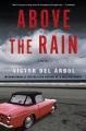 Above the rain : a novel