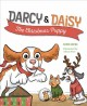 Darcy & Daisy : the Christmas puppy