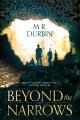 Beyond the Narrows : a novel