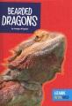 Bearded dragons