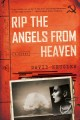 Rip the angels from heaven : a novel
