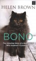 Bono : the amazing story of a rescue cat who inspired a community