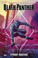 Marvel action. Black Panther. Stormy weather. Book 1